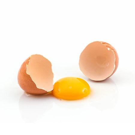 מזון ביצים