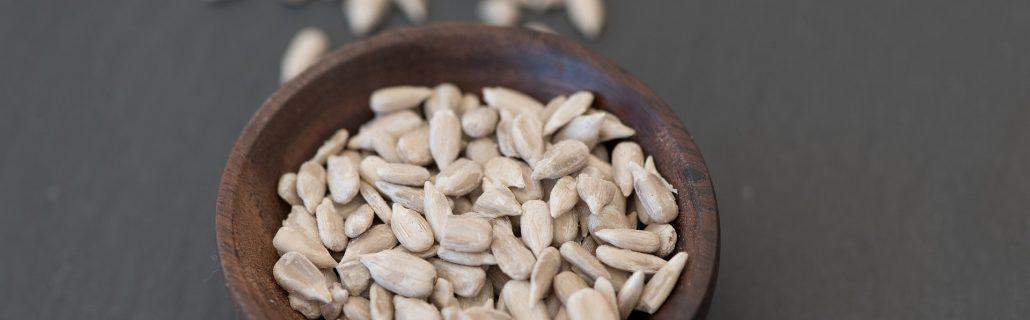 מזון לכנרים - זרעי חמניה